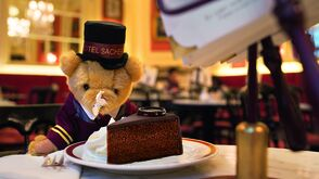 Petit Sacher - Franz Teddy enjoying a piece of Sacher Torte