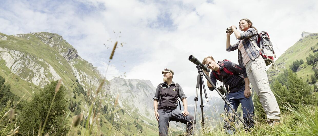 Nature Watch im Nationalpark Hohe Tauern